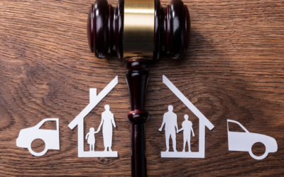 Family Law: Maintenance and Parenting Plans